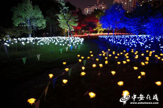 图为徽园灯展现场的景观。