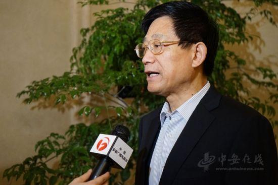 赴京参会的住皖全国政协委员接受记者采访。