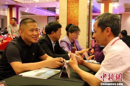 海外侨商、侨领同安徽省直有关部门和地方招商部门进行项目对接洽谈。 刘鸿鹤 摄