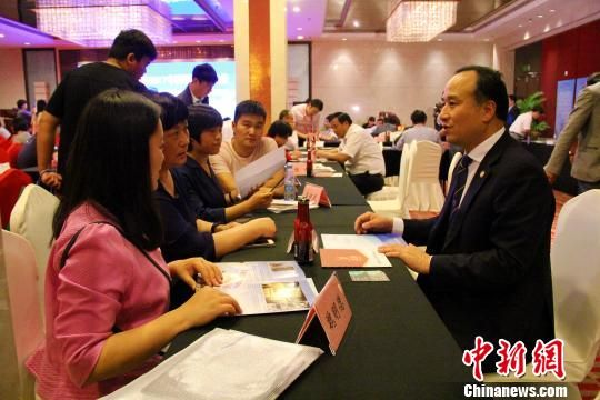 海外侨商、侨领同安徽省直有关部门和地方招商部门进行项目对接洽谈,一批项目达成合作共识。 刘鸿鹤 摄