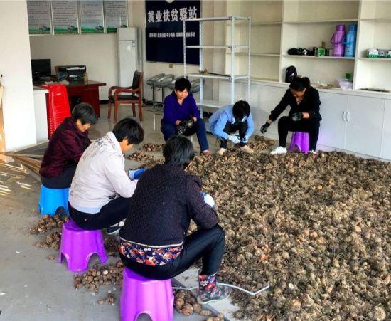 村民在地龙扶贫产业项目车间打理绿色农产品。资料图