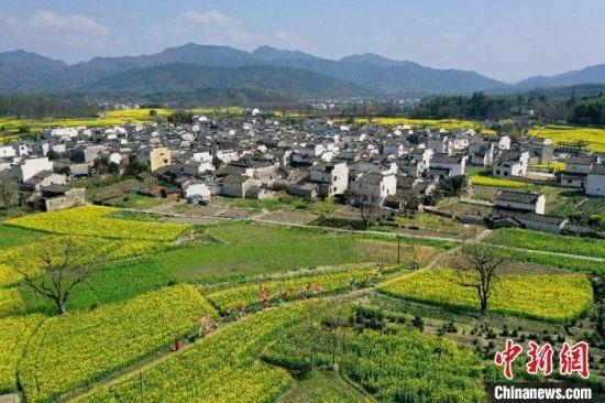 """3月19日,""""美丽中国黄山行 """"系列活动在黄山市黟县石林正式启动。图为航拍芦村。 樊成柱 摄"""