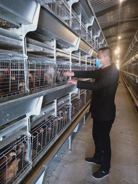 马国勇检查养鸡场设备