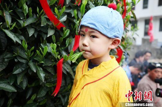 名茶太平猴魁开园 未来将实现智能化标准化生产