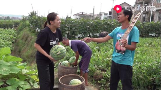 3-重回鄉村,西瓜視頻創作者鄉村小喬為一頭豬痛哭,牽動百萬網友心1082.png