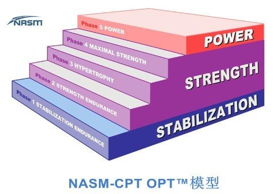 NASM OPT模型:8大优势赋能健身行业未来