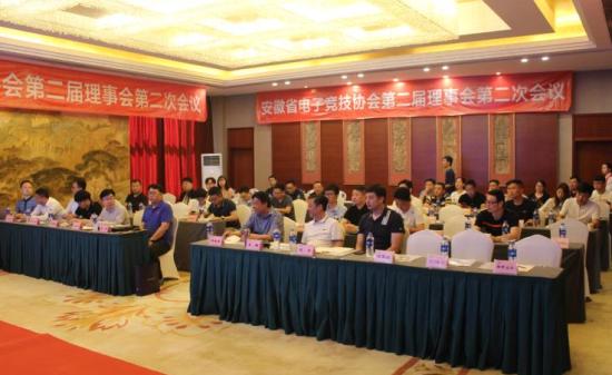 安徽省电子竞技协召开第二届理事第二次拖航滑翔机图片
